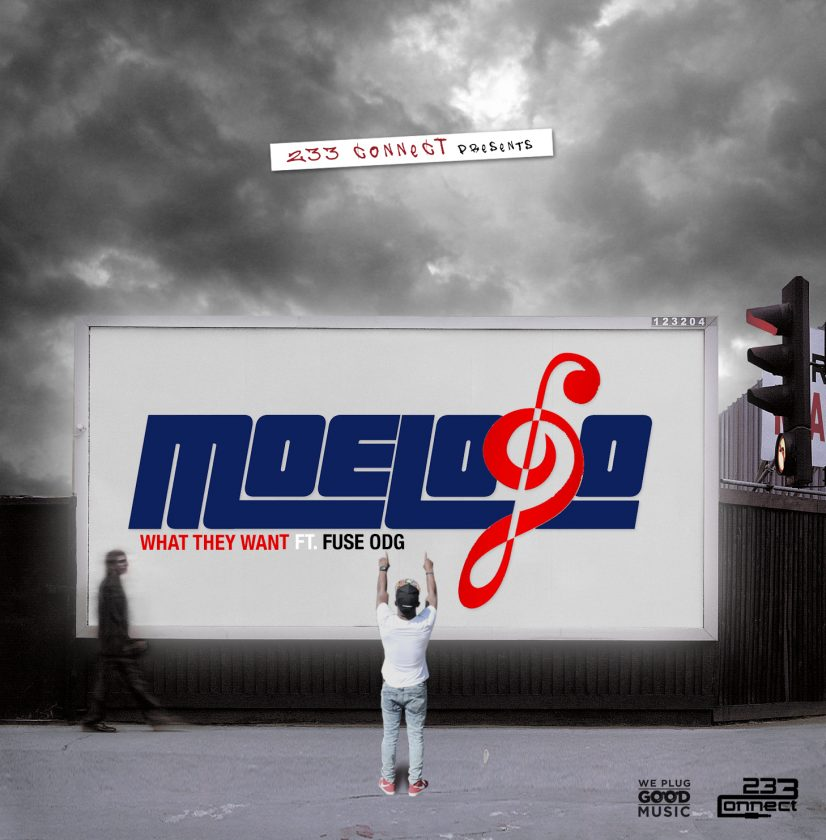 Moelogo ft Fuse ODG - What They Want