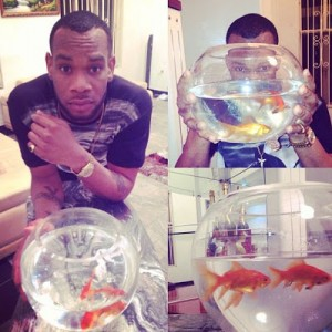 D'Prince and his gold fish
