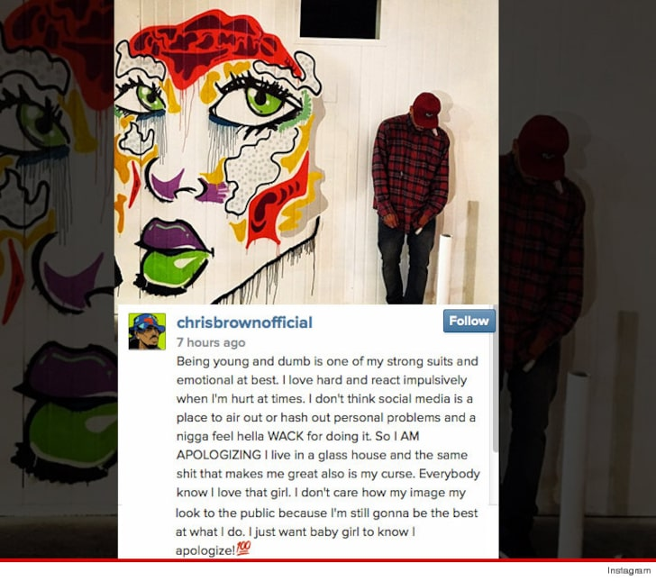 Chris Brown just apologized to Karrueche