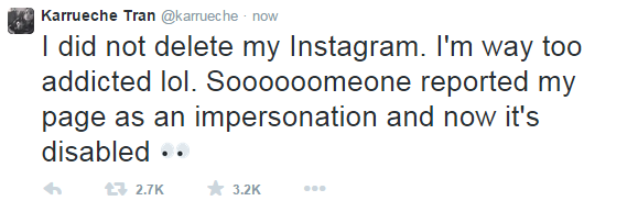 Karrueche's Instagram page deleted after Chris Brown's drama