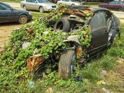 Dagrin's ill-fated car abandoned in LASU over 20k