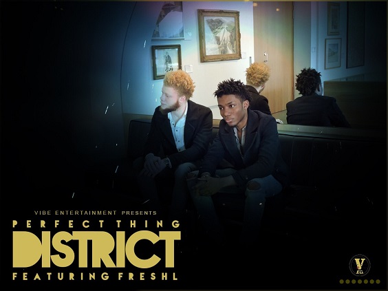 District - Perfect Thing ft FreshL
