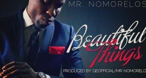 Nomoreloss - Beautiful Things