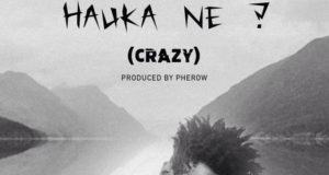 T.R - Hauka Ne (Crazy) [AuDio]