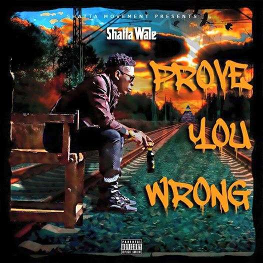 Shatta Wale - Prove You Wrong [ViDeo]