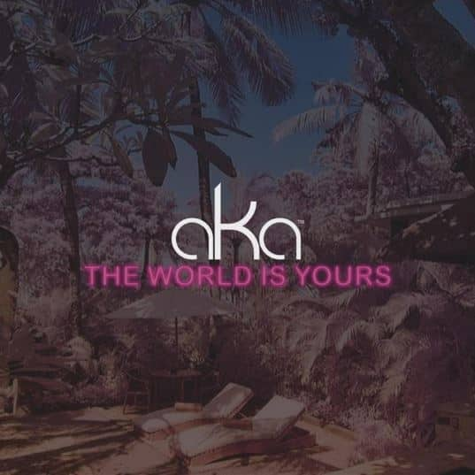 AKA - The World Is Yours [AuDio]