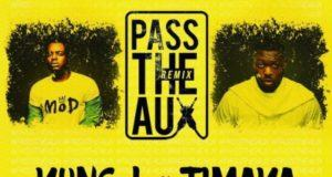 Yung L - Pass The Aux (Remix) ft Timaya [ViDeo]