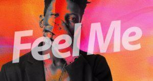 Terry Apala - Feel Me [AuDio]