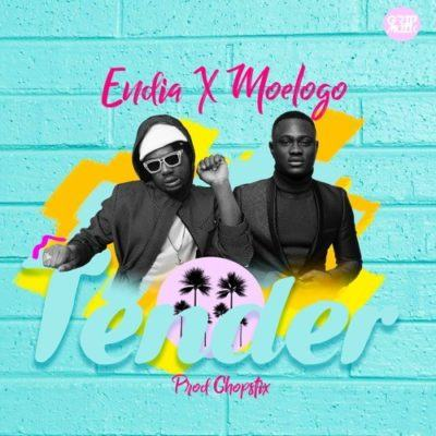 Endia - Tender ft Moelogo [AuDio]