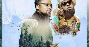 Willicino – Ayanda (Remix) ft Timaya [AuDio]