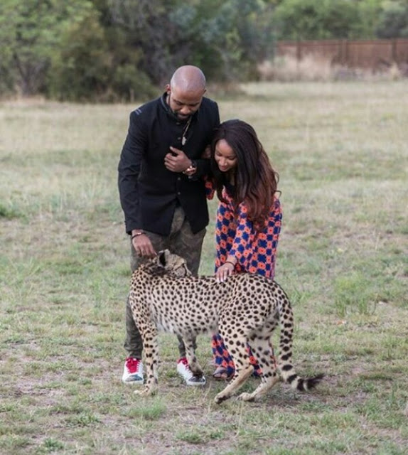 Adesua and Banky W with Cheetah