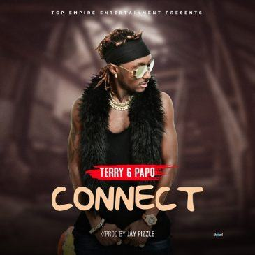Terry G - Connect [AuDio]
