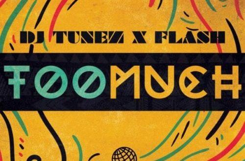 DJ Tunez & Flash – Too Much [AuDio]