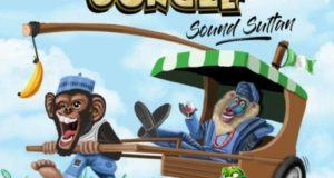 Sound Sultan – Naija Jungle [AuDio]