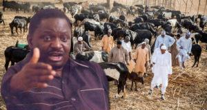 Femi Adesina's irresponsible statement on cattle colony