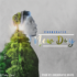 Chordratic – New Day [AuDio]