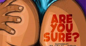Masterkraft – Are You Sure? ft Zlatan & CDQ [AuDio]