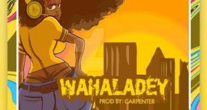 9ice – Wahala Dey [ViDeo]