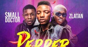 Small Terry, Zlatan & Small Doctor – Pepper [AuDio]