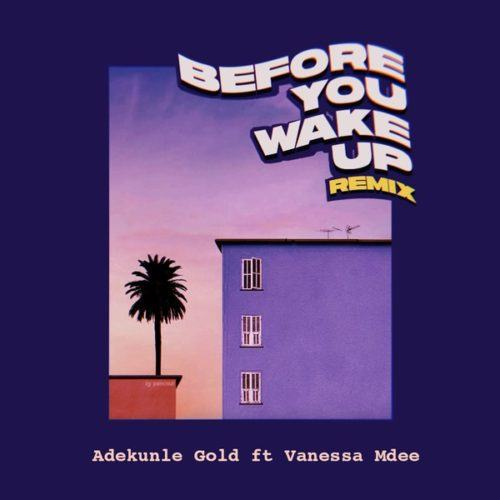 Adekunle Gold – Before You Wake Up (Remix) ft Vanessa Mdee [AuDio]