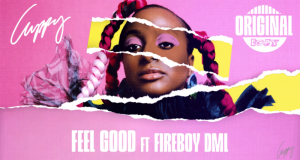 Cuppy – Feel Good ft Fireboy DML