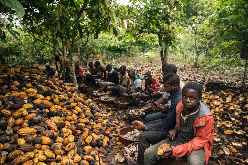 Africa isn't earning more from cocoa