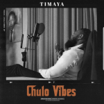 Timaya – Pull Up ft Burna Boy [AuDio]